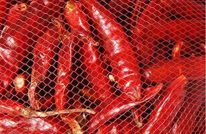Monofilament Extruder Line For Making PP Vegetables/Fruits Mesh Bag